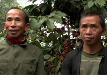 Coffee producers